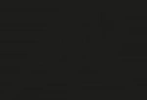 Logo anna rapacz